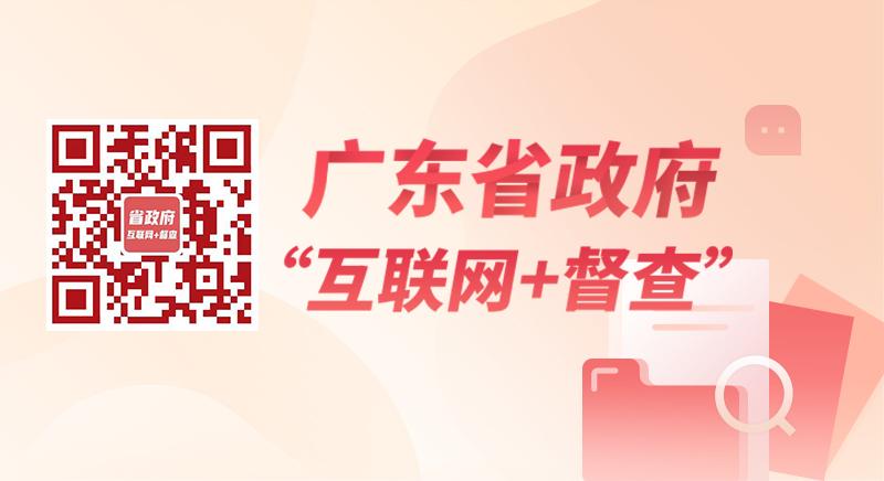 """广东省政府""""互联网+督查"""""""